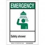 Brady 119274, Safety Shower Sign, Black/Green/White
