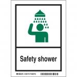 Brady 119859, Safety Shower Sign, Black/Green/White