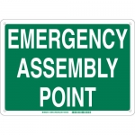 Brady 139641, Assembly Point Sign, Green on White